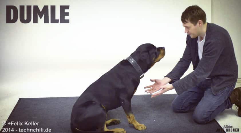 Zauberei für Hunde  - Jose Ahonen zaubert für Hunde
