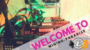 Einstieg ins Krypto-Mining inkl Einführung zu Bitcoin, Blockchain & Co
